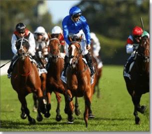 online horse racing sites