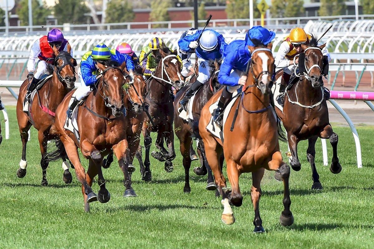 Hartnell (GB) ridden by James McDonald wins Yellowglen Turnbull Stakes at Flemington Racecourse on October 02, 2016 in Flemington, Australia. (John Donegan/Racing Photos)