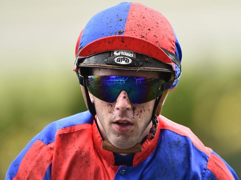 Brenton Avdulla Jockey