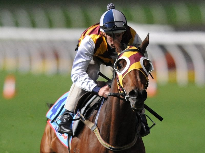 Hugh Bowman rides the Chris Waller trained Shoot Out