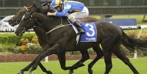 Music Magnate Victory Stakes betting