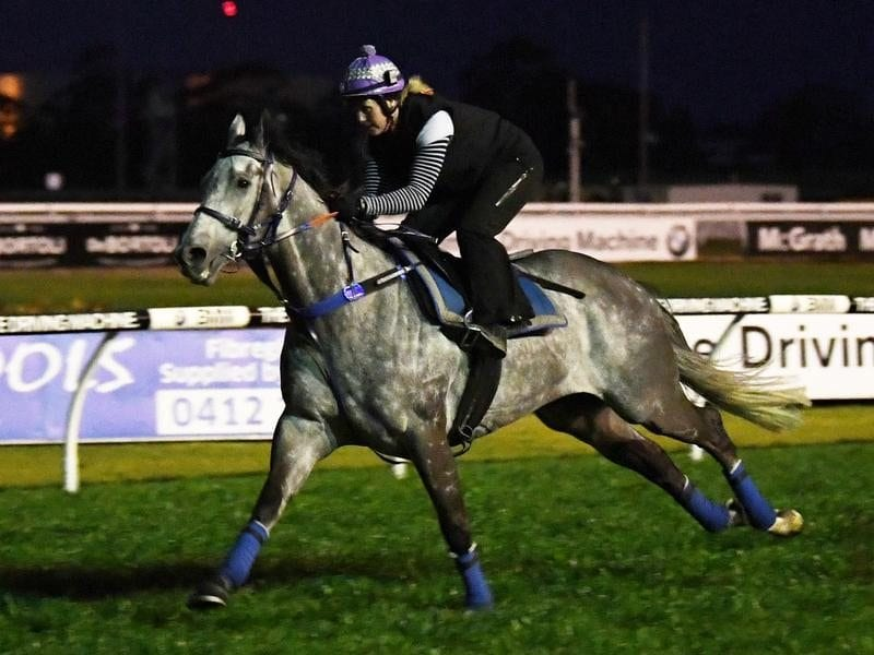 Chautauqua returns at Randwick