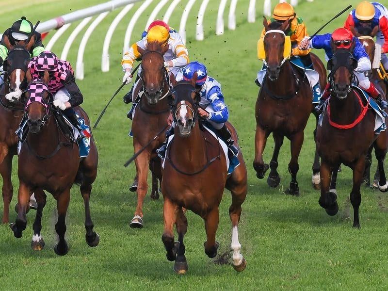 Jockey Matthew McGillivray (centre) rides Crack Me Up to win race 8.