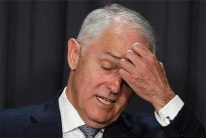 Malcolm Turnbull betting