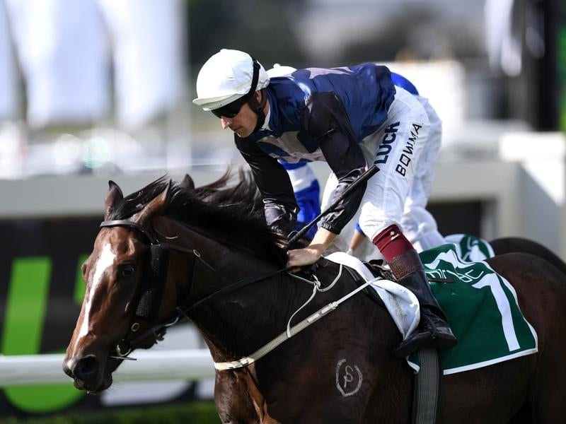 Hugh Bowman rides Salsonic to win the Queensland Guineas