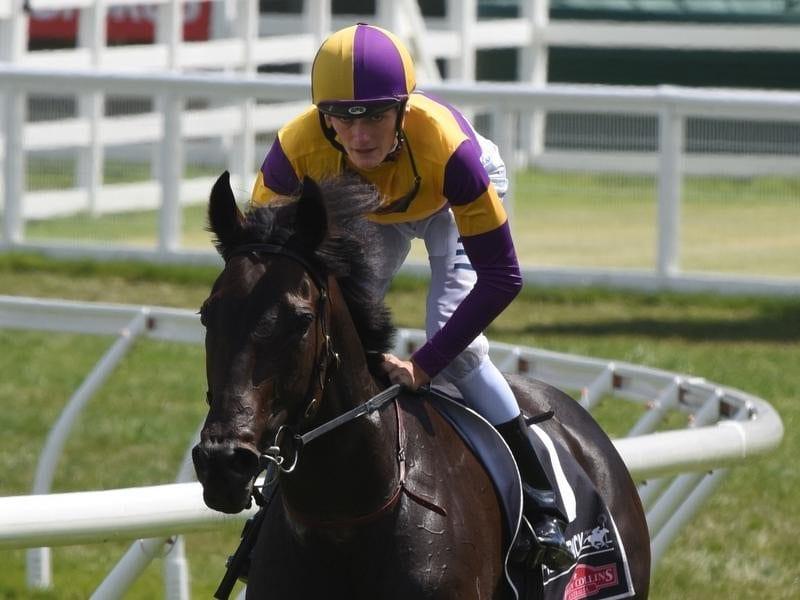 Jockey Regan Bayliss rides Lady Esprit