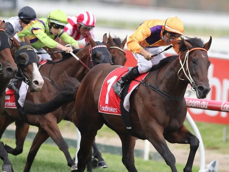 Overshare wins the Group Three Zeditave Stakes at Caulfield