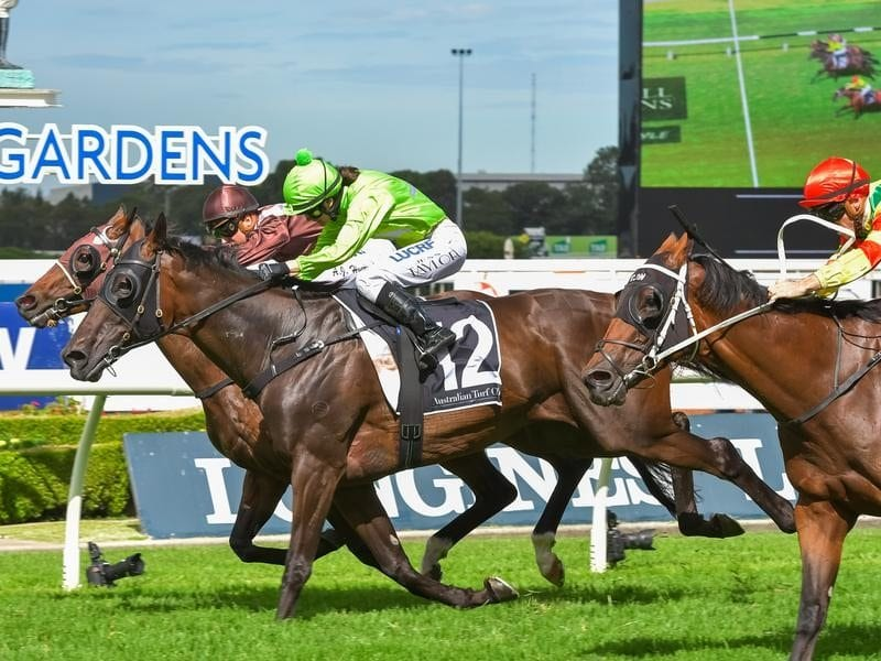 More Energy wins the Listed Parramatta Cup at Rosehill