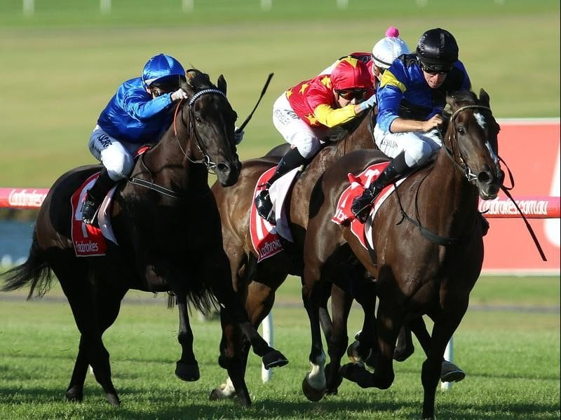Holbien wins at Sandown.