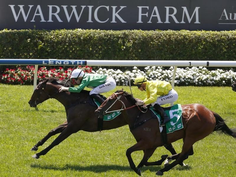 Sheikha wins at Warwick Farm.