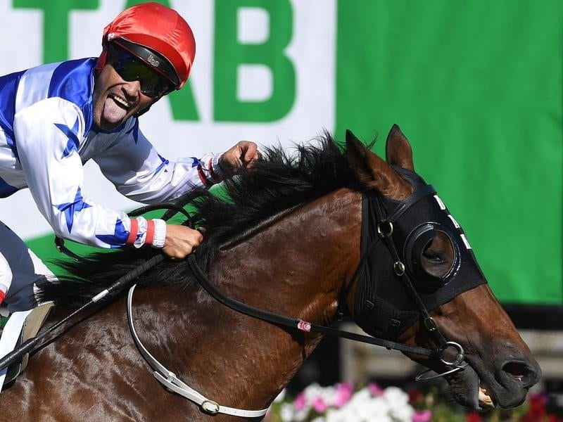 Michael Walker reacts after Harlem won the TAB Australian Cup