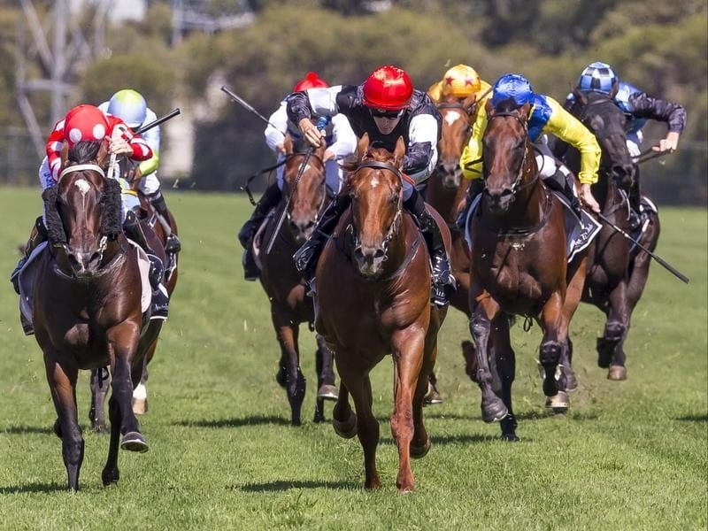 Jordan Childs rides Written By to win race 4, the Cafe Culture.
