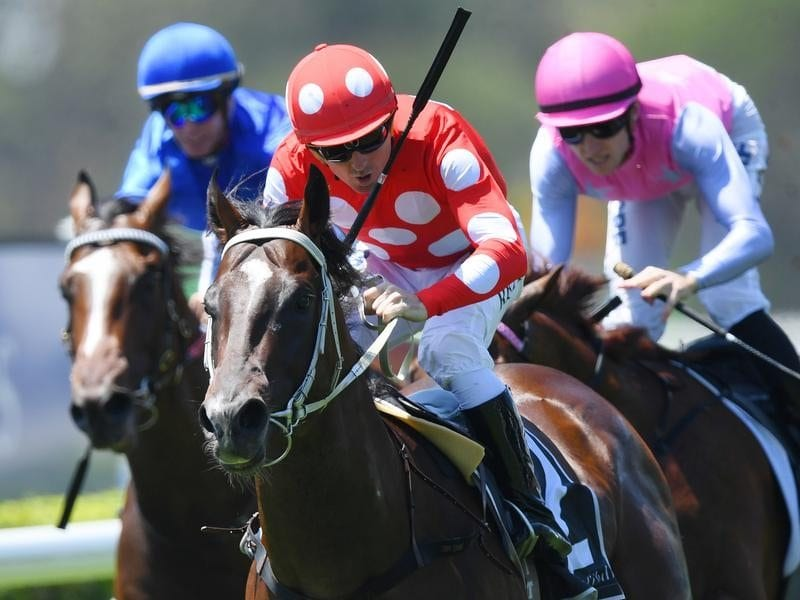 Sanbar wins the Lonhro Plate