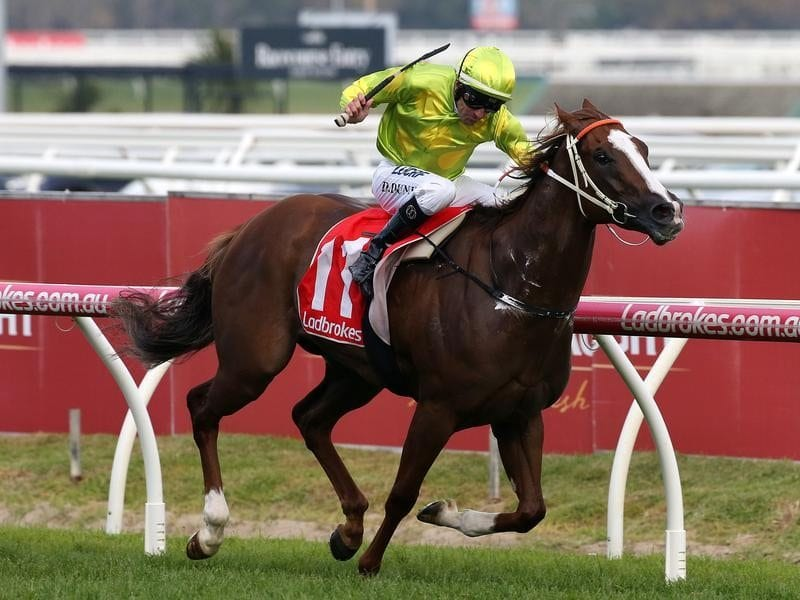 Dwayne Dunn rides Sprightly Lass to victory