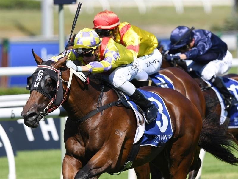 Paquirri wins the Kindergarten Stakes at Randwick