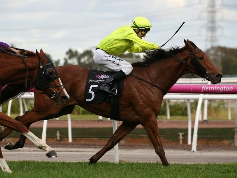 Sin To Win hangs on in the Andrew Ramsden Stakes.