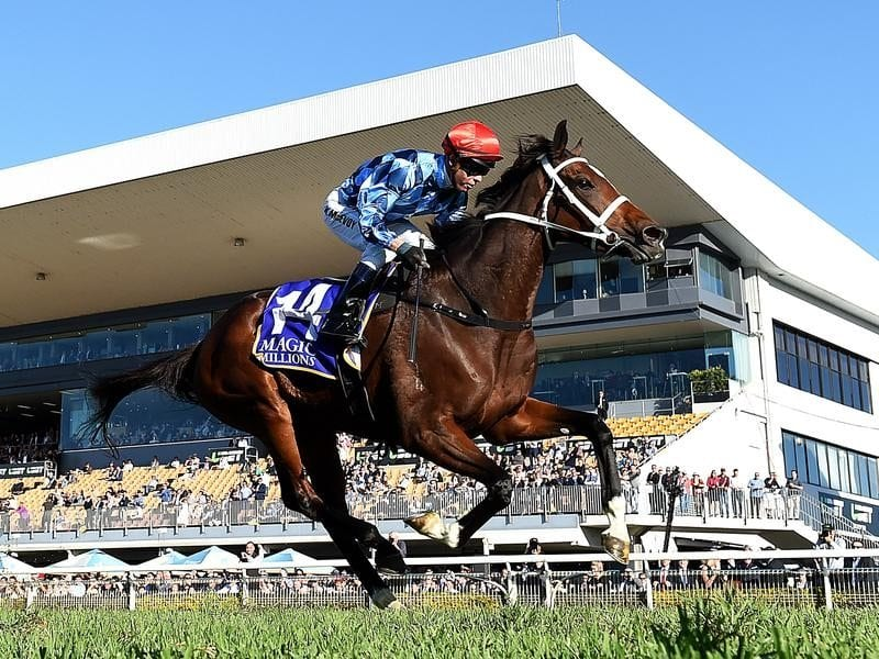 Youngstar wins at Doomben.