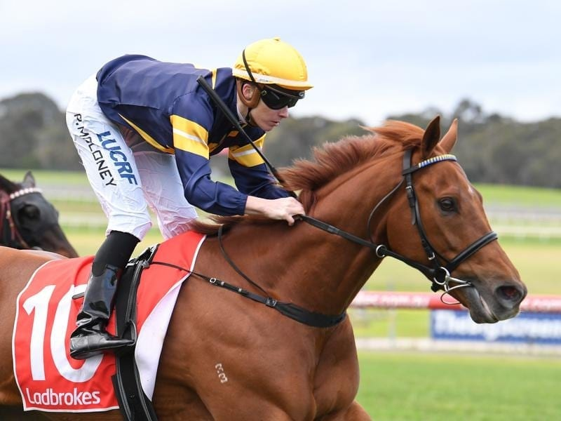 Patrick Moloney rides Hang Man to victory in race 4 at Sandown