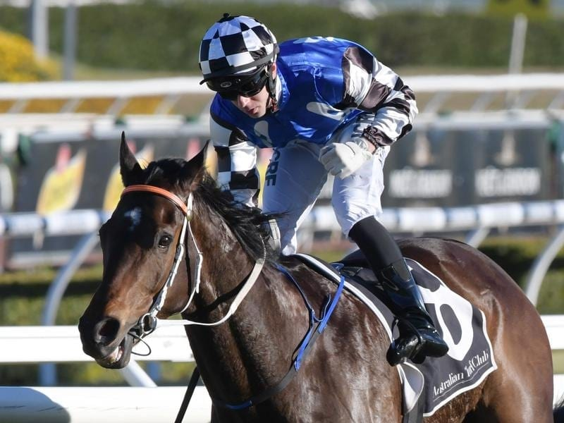 Jockey, Brenton Avdulla rides Tactical Advantage.