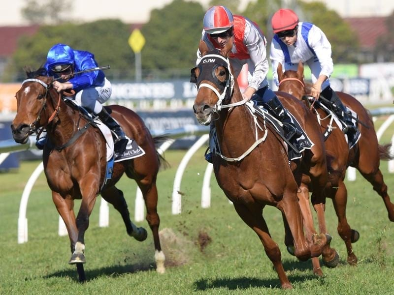 Hugh Bowman rides Jolly Honour to win race 3 at Rosehill