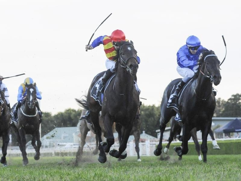 Jockey James McDonald rides Pierata in the Missiles Stakes