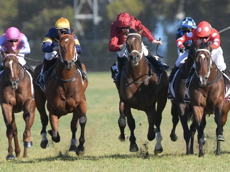 Sandbar (right) wins the Listed Rosebud.