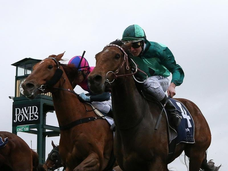 Humidor wins the Memsie Stakes.