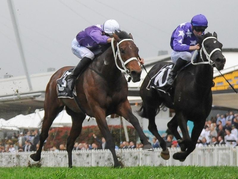 Invincibella (left) and Noire fight out the Sheraco Stakes.