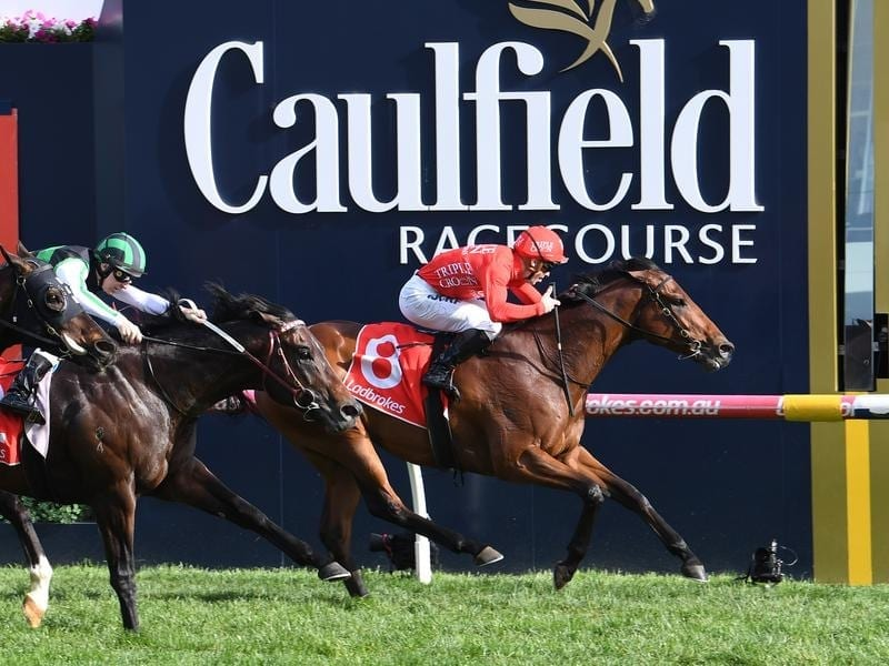 Brave Song wins at Caulfield.