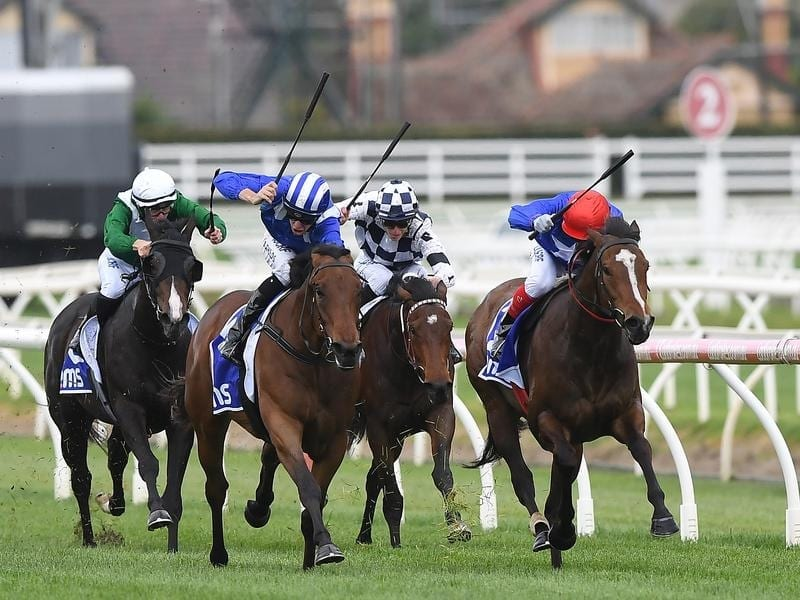 Zizzis (right) wins at Caulfield.