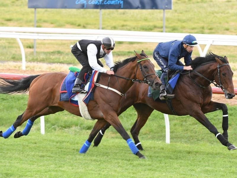 Magic Circle and Marmelo work together.