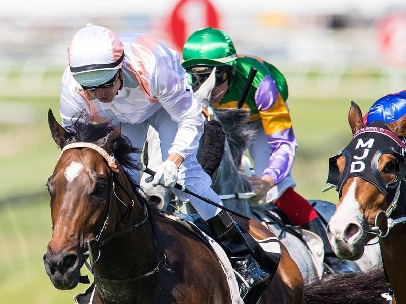 Fiery Heights wins at Doomben.