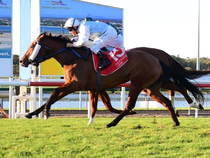 A Sunshine Coast race