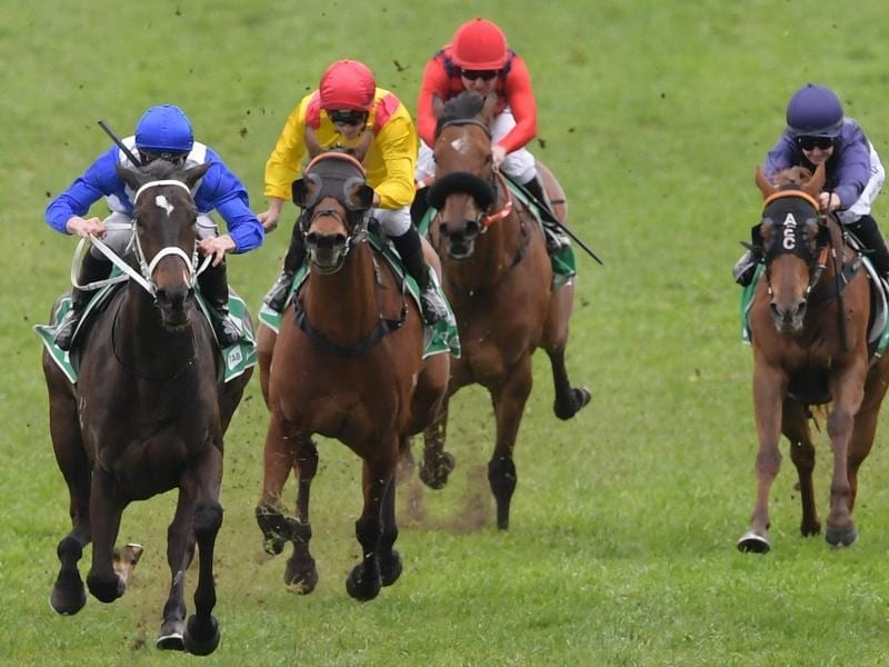 Girls Tuesday wins at Rosehill.