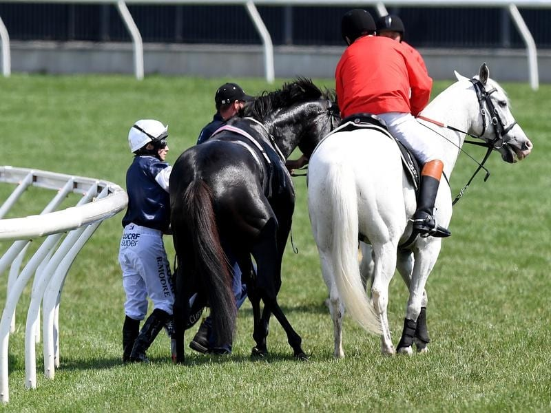 Jockey Ryan Moore on The Cliffsofmoher is assisted by a race steward.
