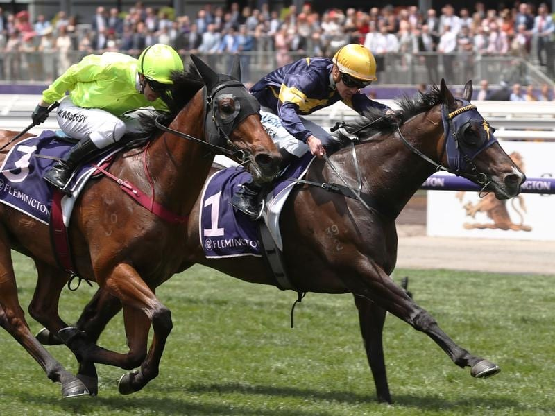 Lotalty Man (right) wins at Flemington.