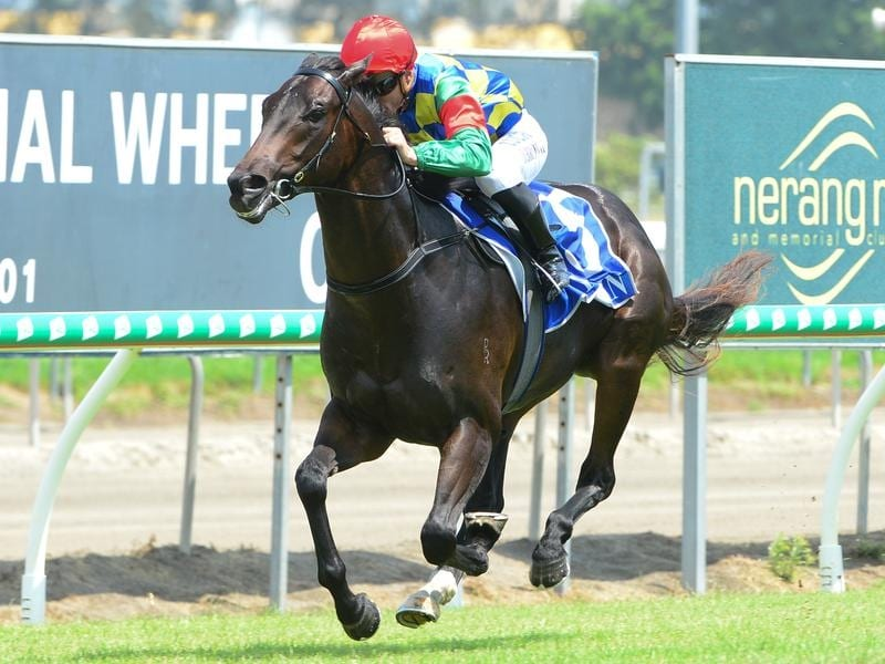 Well Prepared wins at the Gold Coast.