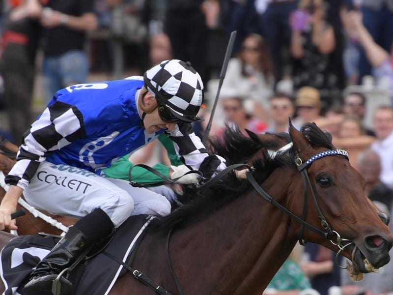 Jason Collett rides Our Century to victory in race 4 at Rosehill