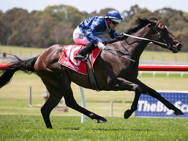 Noel Callow rides Persuader to win race 3 at Sandown