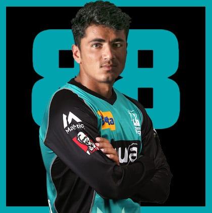 Brisbane Heat T20 stats