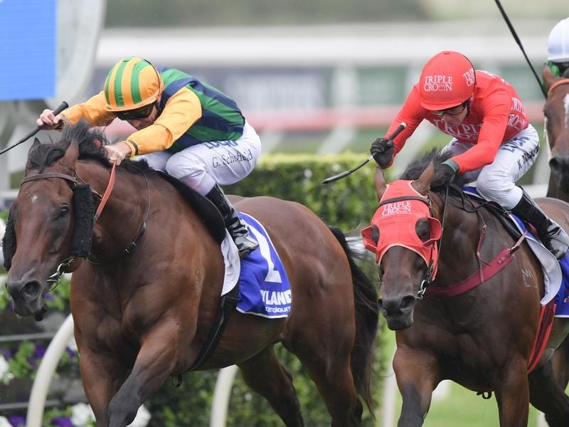 Ball Of Muscle and Redzel.