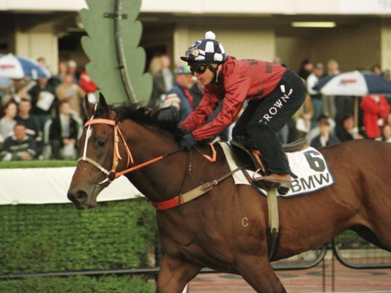 redoute's choiced