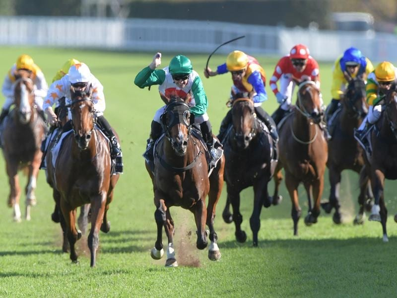 Jockey Joshua Parr rides Castelvecchio to victory