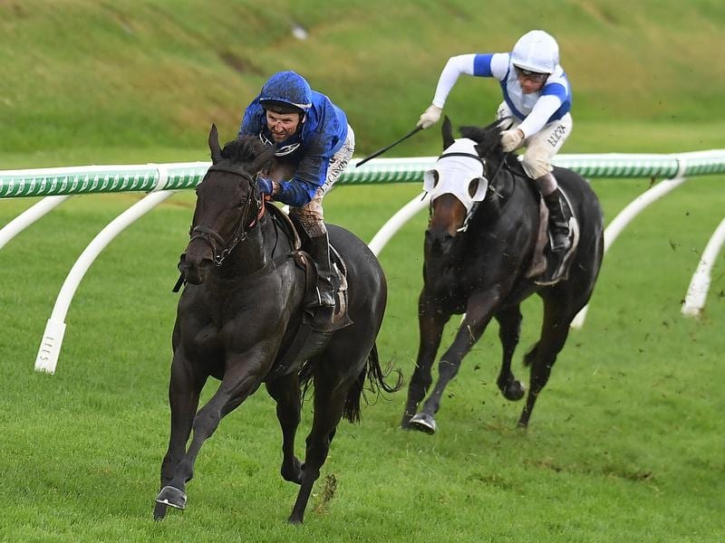 Larry Cassidy rides Plague Stone to victory