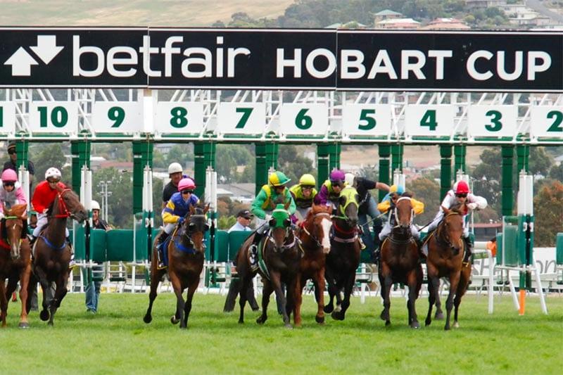 Tasmanian racing news