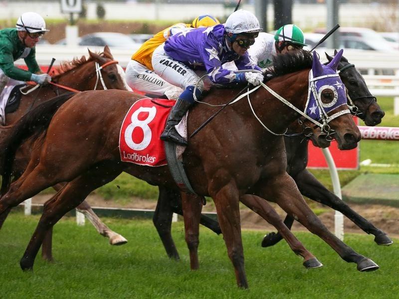 Jockey Michael Walker rides Voila to victory