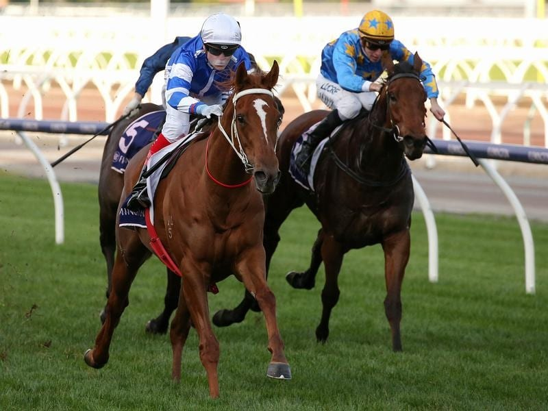 Jockey Craig Williams rides Gytrash to victory