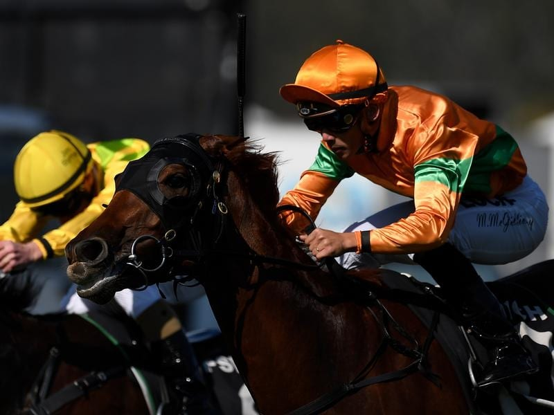 Matthew McGillivray rides Jeweliana to victory