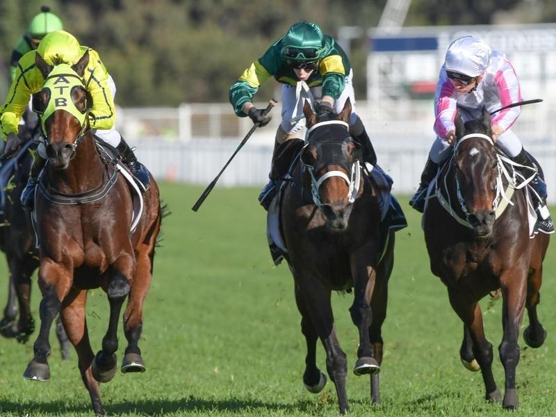 Jockey Sam Clipperton rides Destiny's Kiss to victory