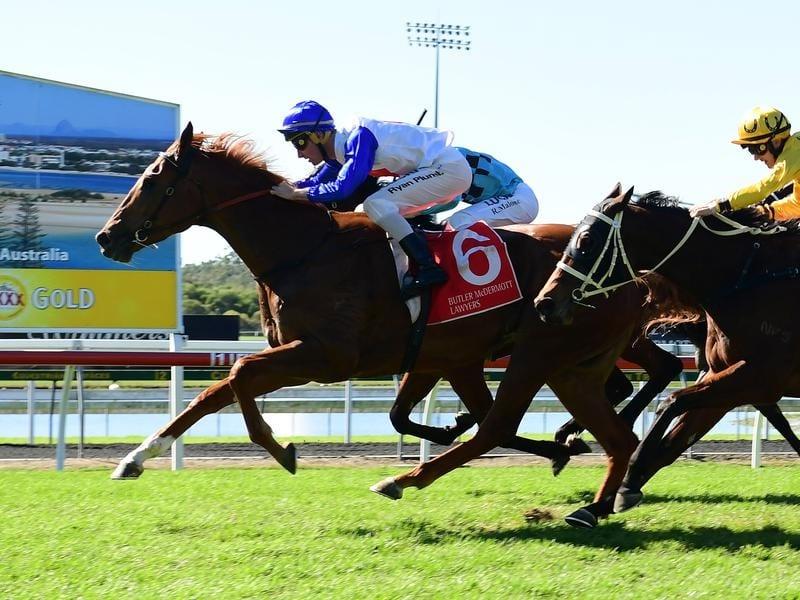 Jockey Ryan Plumb rides Sofie's Gold.